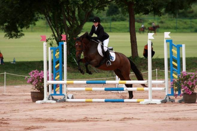 horse-show1