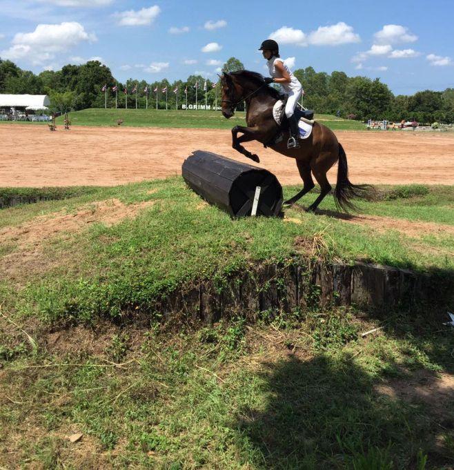 horse1-001